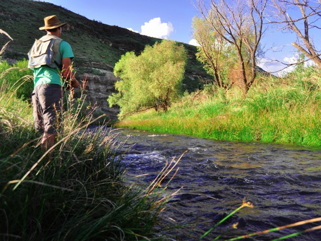 Fly fishing in the Karringmelkspruit, Lady Grey.