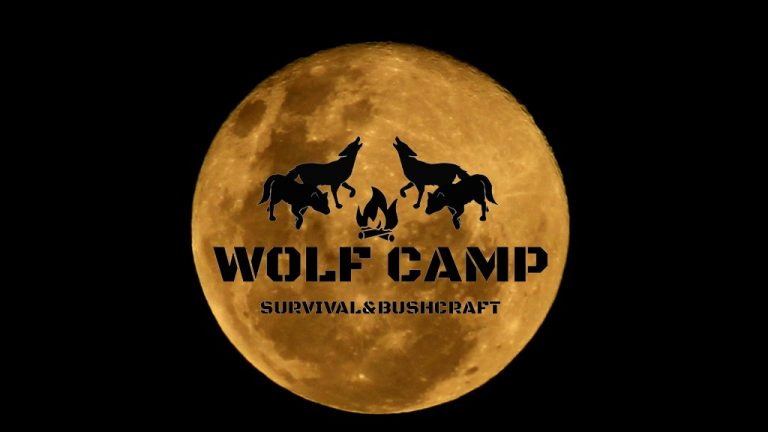 Wolf Survival Traning - Lady Grey Moon 1