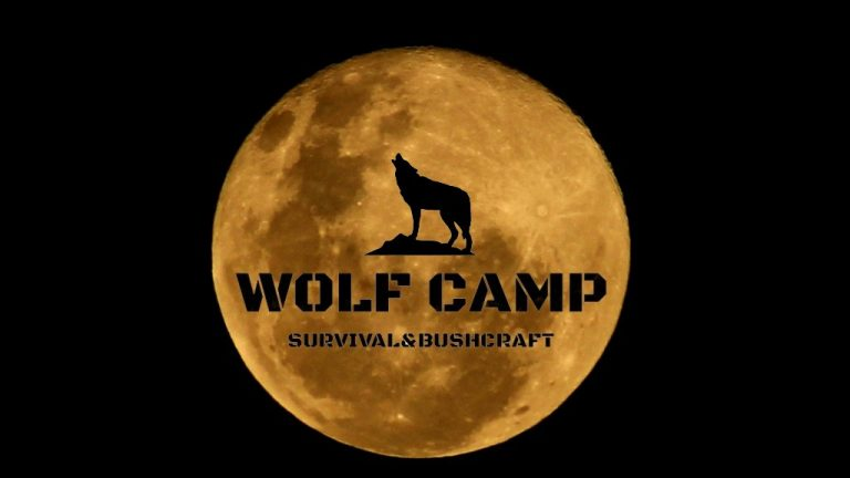 Wolf Survival Traning - Lone Wolf